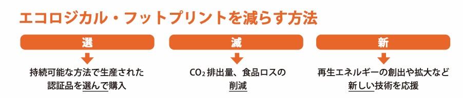 出典:WWF 「日本のエコロジカル・フットプリント 2017最新版」